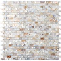 beige natural shell tiles ZOE4908.jpg